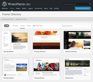 customizing-wordpress