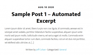 automated excerpt example