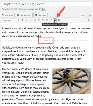how to add WordPress manual excerpt in editor