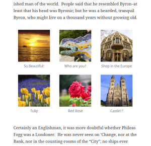 screen shot of a WordPress gallery for amr shortcode any widget